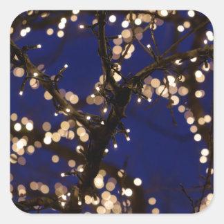 Pegatina Cuadrada Ramas con las luces de navidad
