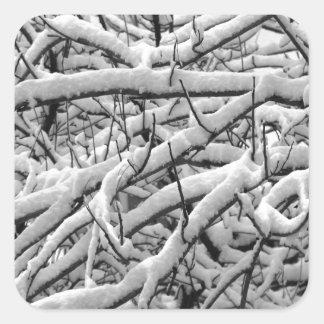 Pegatina Cuadrada Ramas Nevado