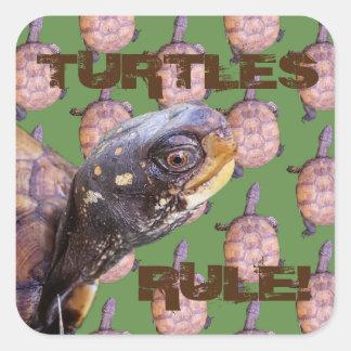 Pegatina Cuadrada ¡Regla de las tortugas!