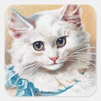 Pegatina Cuadrada Retrato blanco del gato
