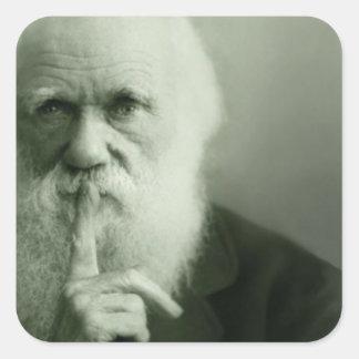 Pegatina Cuadrada Retrato de Darwin del vintage