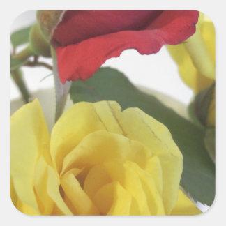 Pegatina Cuadrada Rosas amarillos y rojos