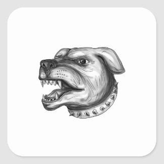 Pegatina Cuadrada Tatuaje el gruñir de la cabeza de perro de