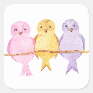 Pegatina Cuadrada trío de los búhos de la acuarela
