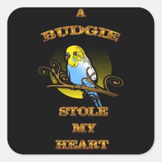 Pegatina Cuadrada Un Budgie robó mi corazón
