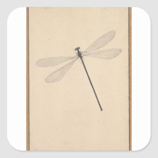 Pegatina Cuadrada Una libélula, por Nicolás Struyk, temprano décimo