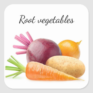 Pegatina Cuadrada Verduras de raíz