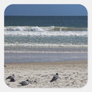 Pegatina Cuadrada Watchin el rollo de la marea lejos