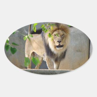Pegatina de la fauna del león