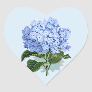 Pegatina de la flor del Hydrangea del azul de