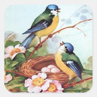Pegatina de la jerarquía de los Bluebirds de la