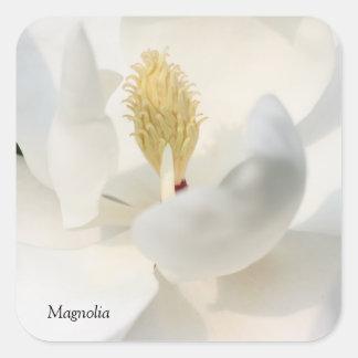 Pegatina de la magnolia