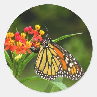 Pegatina de la mariposa de monarca