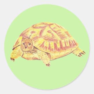 Pegatina de la tortuga, pegatina de la tortuga