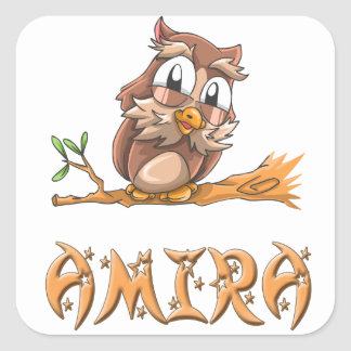 Pegatina del búho de Amira