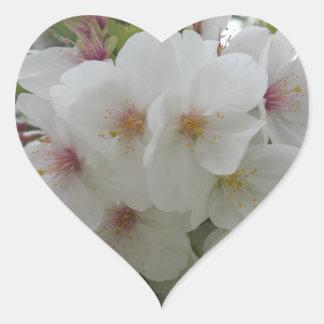 Pegatina del corazón de la flor blanca