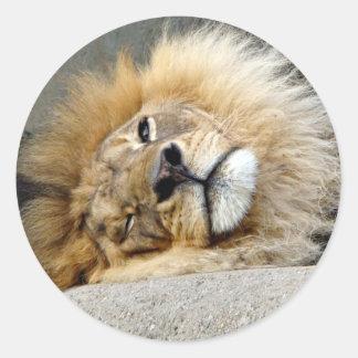 Pegatina del guiño del león