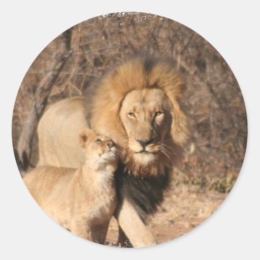 Pegatina del león y de Cub de león