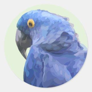Pegatina del Macaw del jacinto