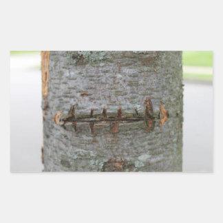 Pegatina del tronco de árbol de la cicatriz