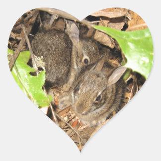 Pegatina En Forma De Corazón Conejitos salvajes del bebé