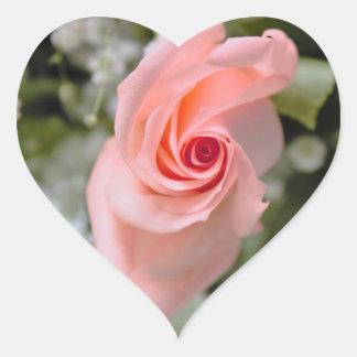 Pegatina En Forma De Corazón Foto color de rosa rosada