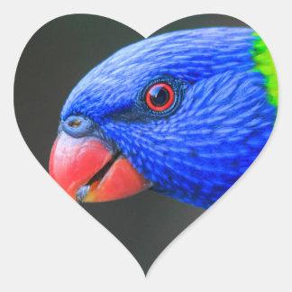 Pegatina En Forma De Corazón Fresco-Arco iris-Lorikeet-silkenphotography