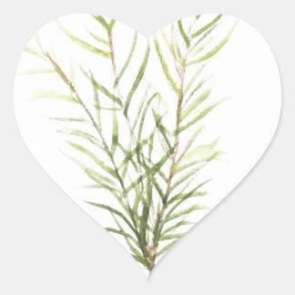 Pegatina En Forma De Corazón Hierbas de Rosemary