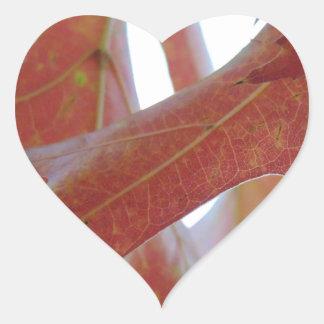 Pegatina En Forma De Corazón Hojas del roble del otoño