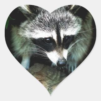 Pegatina En Forma De Corazón mapache
