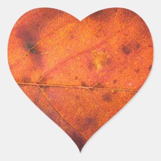 Pegatina En Forma De Corazón Pegatinas naranja-rojos de la foto de la hoja del