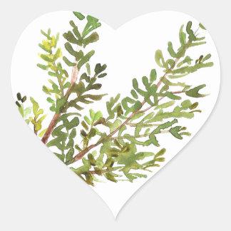 Pegatina En Forma De Corazón Pintura del watercolour de Rosemary de la hierba