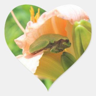 Pegatina En Forma De Corazón Rana arbórea sonriente en el lirio rosado