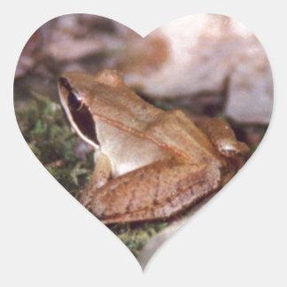 Pegatina En Forma De Corazón Rana de madera