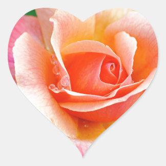 Pegatina En Forma De Corazón Subió en la plena floración