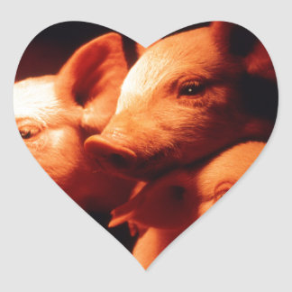 Pegatina En Forma De Corazón Tres pequeños cerdos