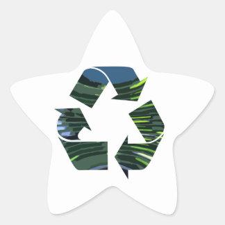Pegatina En Forma De Estrella Adoramos reciclamos el ambiente verde del campeón
