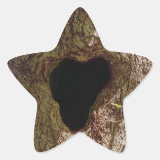 Pegatina En Forma De Estrella Árbol del corazón