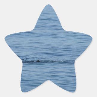 Pegatina En Forma De Estrella Buceador del mar en nadada del juego del equipo de
