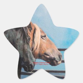 Pegatina En Forma De Estrella Caballos/Cabalos/Horses