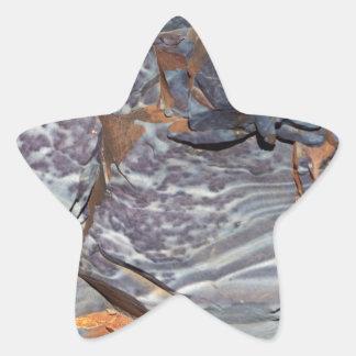 Pegatina En Forma De Estrella Capas naturales de ágata en una piedra arenisca