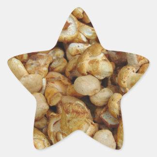 Pegatina En Forma De Estrella Chantarelles