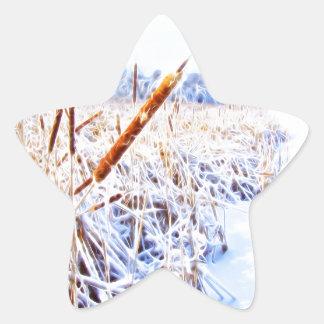 Pegatina En Forma De Estrella Corndog en la nieve