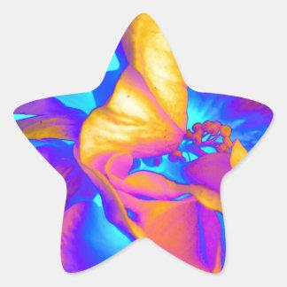 Pegatina En Forma De Estrella deepsola