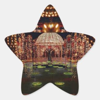 Pegatina En Forma De Estrella DEMOSTRACIÓN LIGERA:   Festival de luces