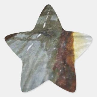 Pegatina En Forma De Estrella El árbol de la vida con el camino ese th de