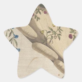 Pegatina En Forma De Estrella El jardín de flores - Matthew Darly