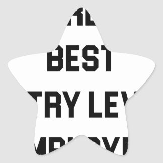 Pegatina En Forma De Estrella El mejor empleado del nivel de entrada