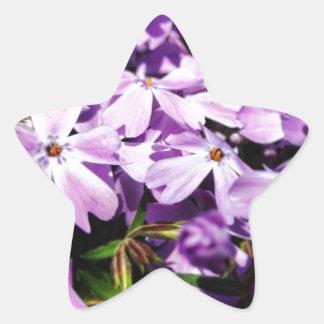 Pegatina En Forma De Estrella El remiendo púrpura de la flor