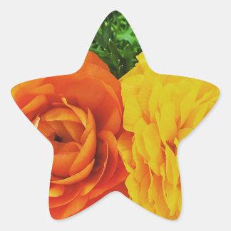 Pegatina En Forma De Estrella Flor doble del problema